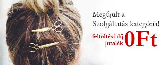 blog_szolg